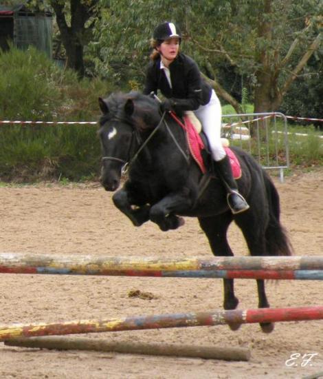 Concour au poney-club de Zance fin 2008